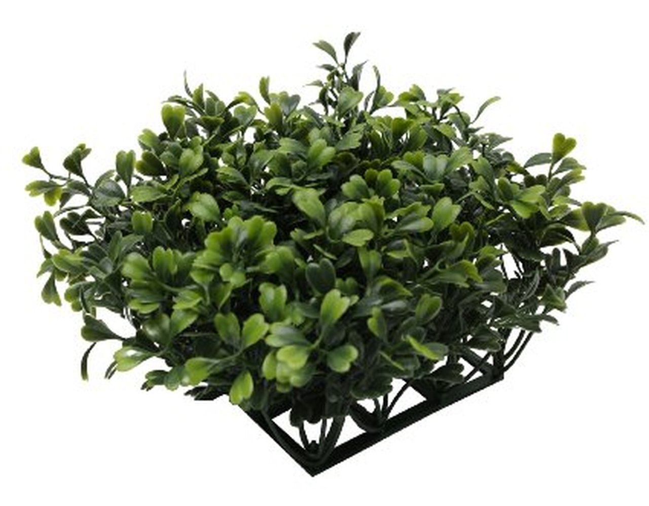 Fluval Chi Aquarium Boxwood Ornament