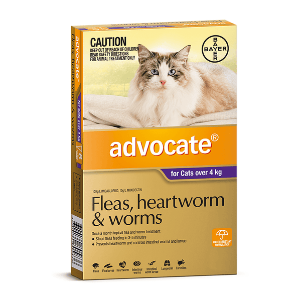 Advocate Fleas, Heartworm and Worm Treatment for Cats