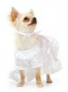 Doggy Bridal Wedding Dress With Veil
