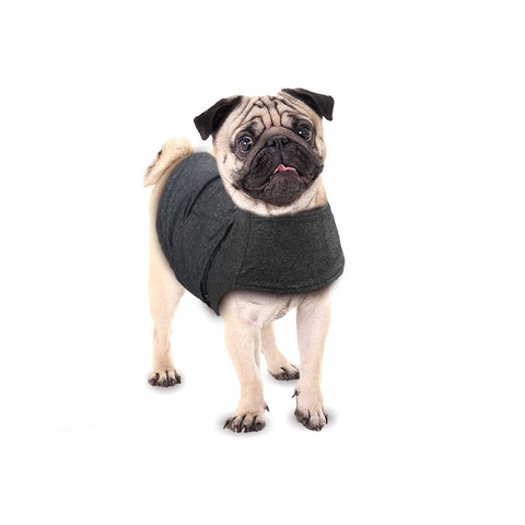 Calm Paws Dog Anxiety Vest
