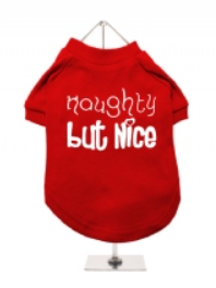 Christmas T-Shirt - Naughty But Nice - Red / White
