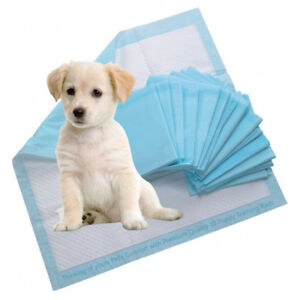 Puppy Toilet Training Pads
