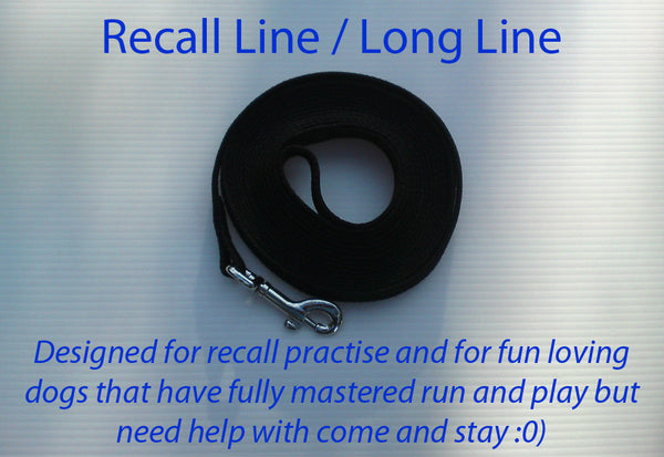 Recall Lead Leash 10m