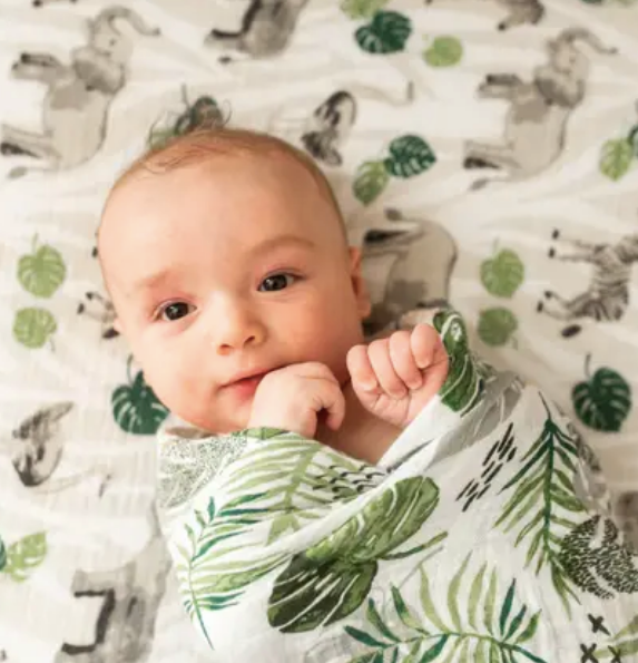 Jungle + Rainforest Classic Muslin Swaddle Blanket Set