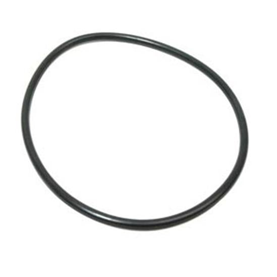 Hayward Chlorinator Cover Viton O-Ring for CL200 - 220 Feeder-Aqua Supercenter Outlet - Discount Swimming Pool Supplies