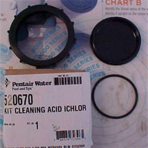 Pentair PacFab Intellichor Acid Cleaning Kit-Aqua Supercenter Outlet - Discount Swimming Pool Supplies