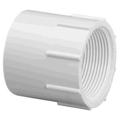 "PVC Female Adapter 2"" -25 Pack-Aqua Supercenter Outlet - Discount Swimming Pool Supplies"