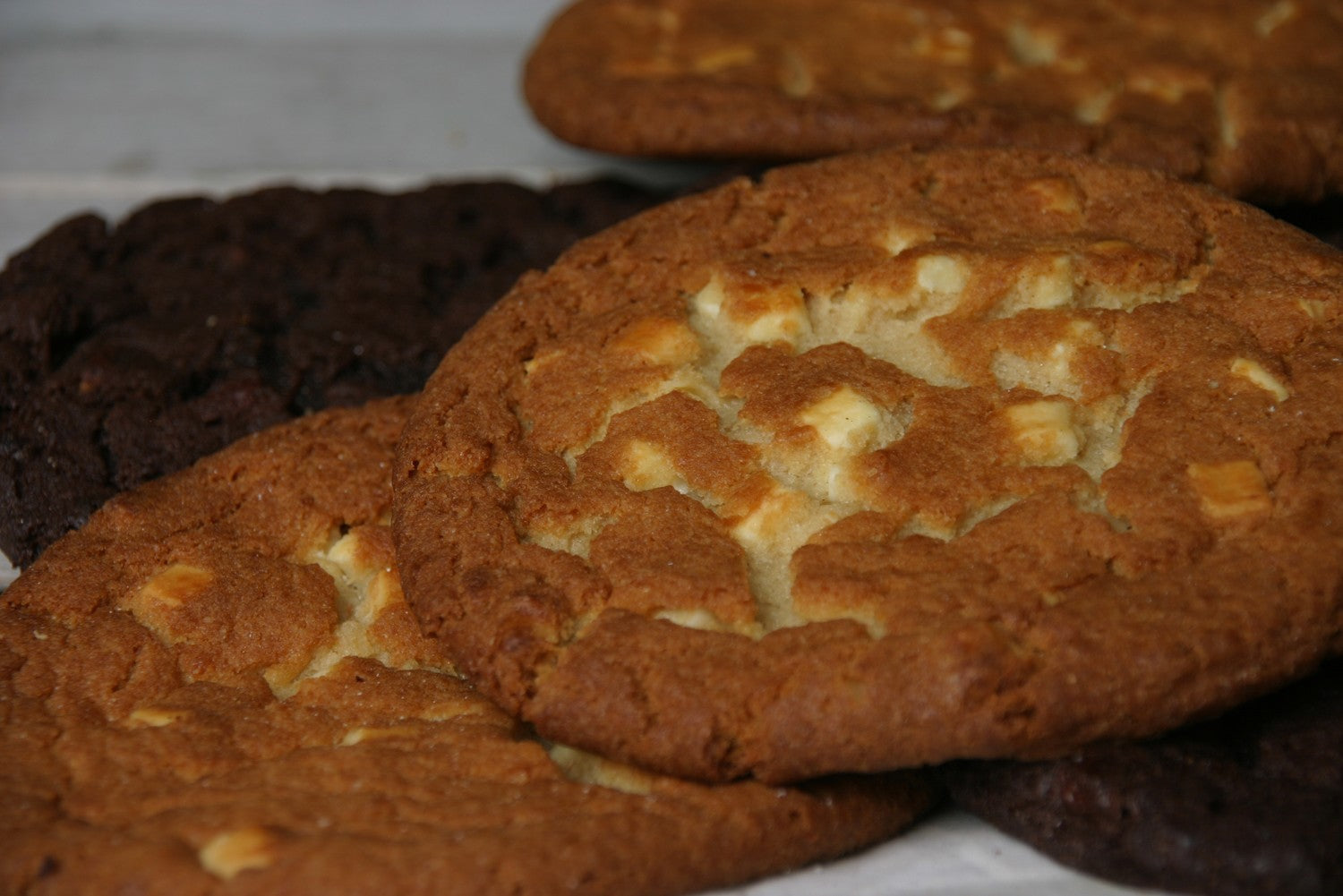 Chocolate Chip Cookie white