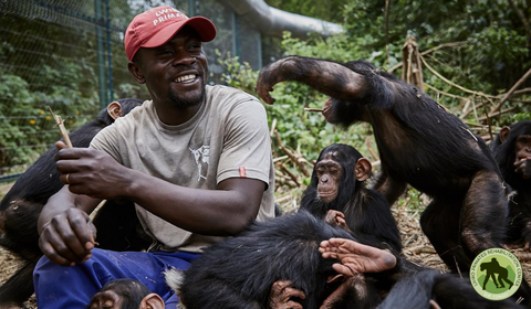 play time at lwiro primates sanctuary