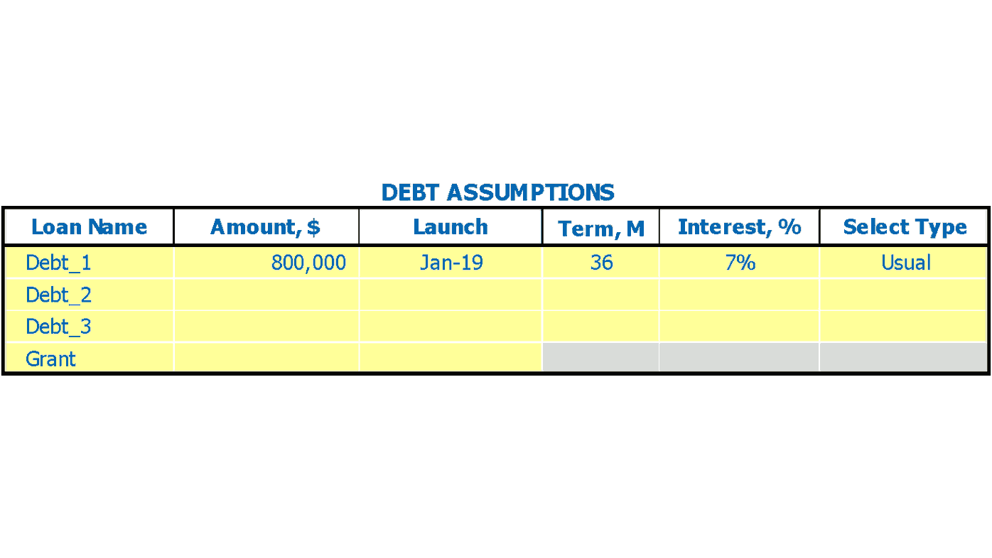 Lingerie Store Financial Projection Excel Template Debts Inputs