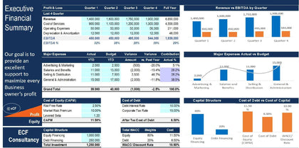 Executive Financial Summary Excel with Power Point Presentation - Templarket -  Business Templates Marketplace