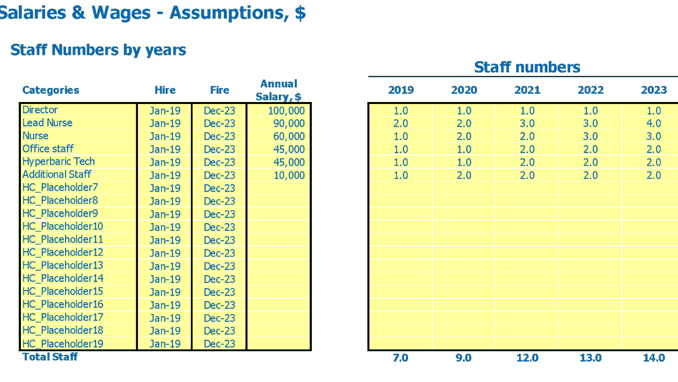 Outpatient Clinic Financial Model Employees FTEs and Salary Inputs