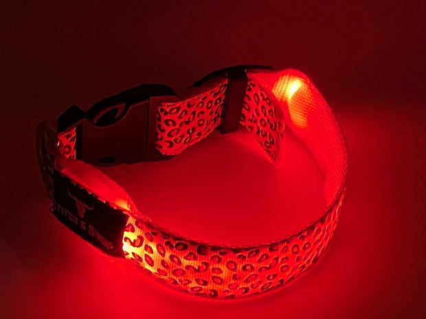 Leopard Print LED Dog Collars - Illuminated Collars for Dogs, Safety, Flashing Light, USB Rechargeable - Multiple Leopard Print Colours - Stitch & Simon