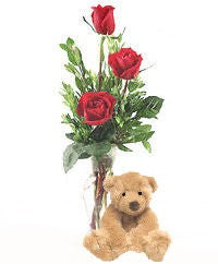 Teddy Bear & Roses In A Vase