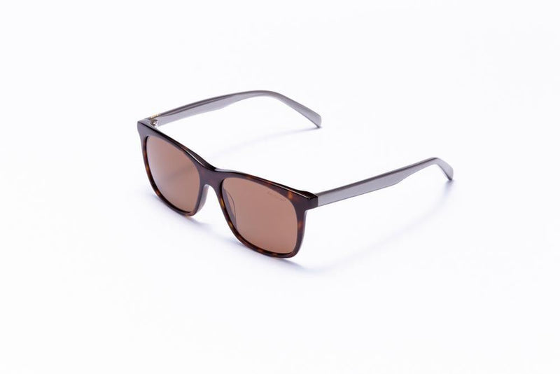 Motor Optics Sunglasses Tortoise Shell with Brown Lenses / 55-15-145 Large Size Formula 1 Accelerate Sunglasses - Available for Pre-Order 12/1/2020