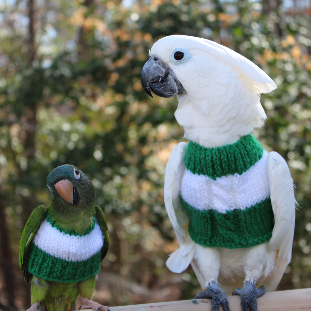 Irish FeatherSweater