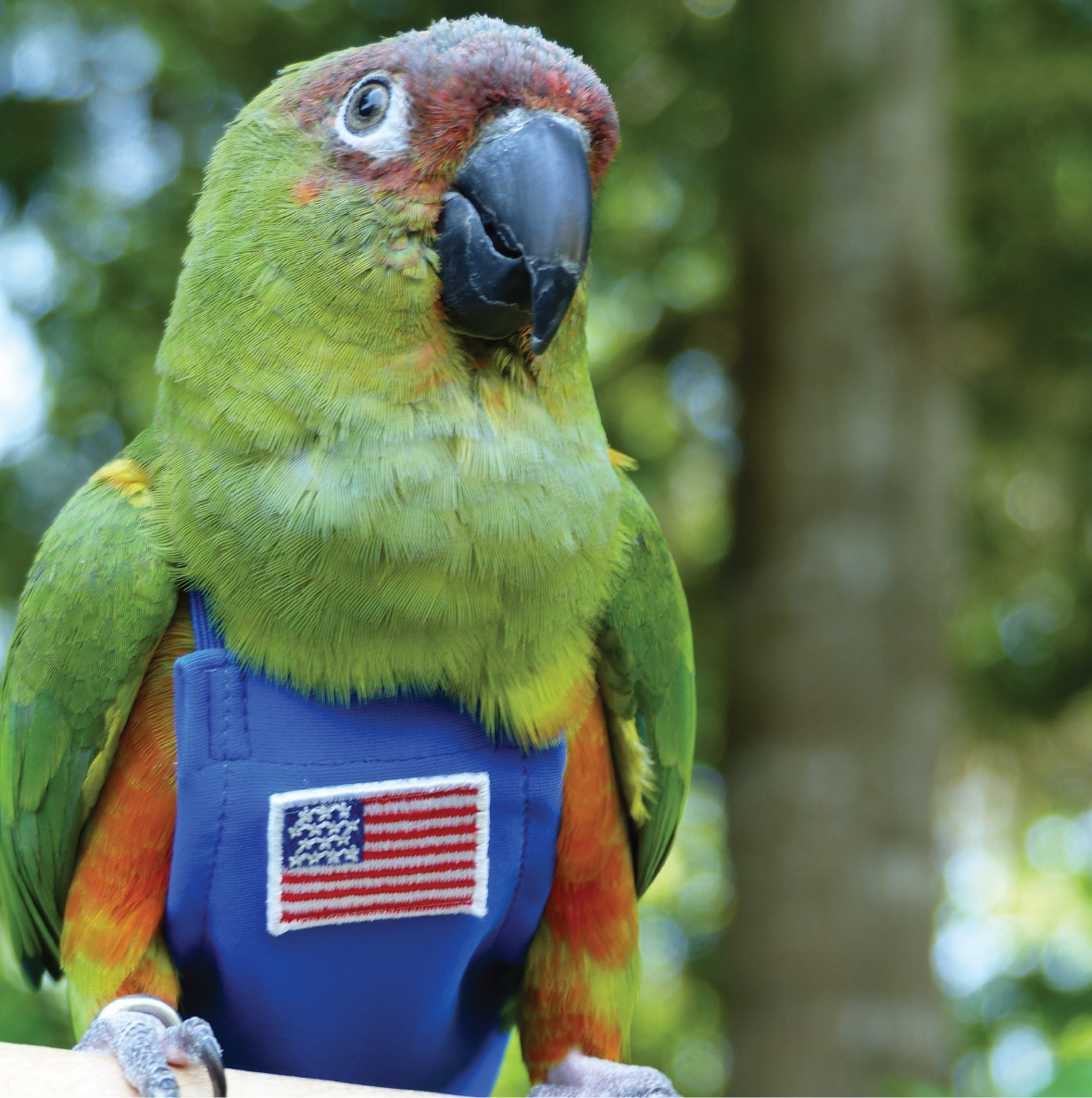 USA FeatherWear FlightSuit™