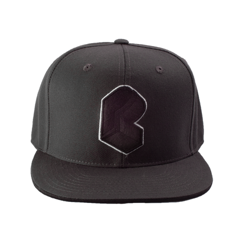 Pretty Lights - Monogram Fitted Hat - Grey & Black