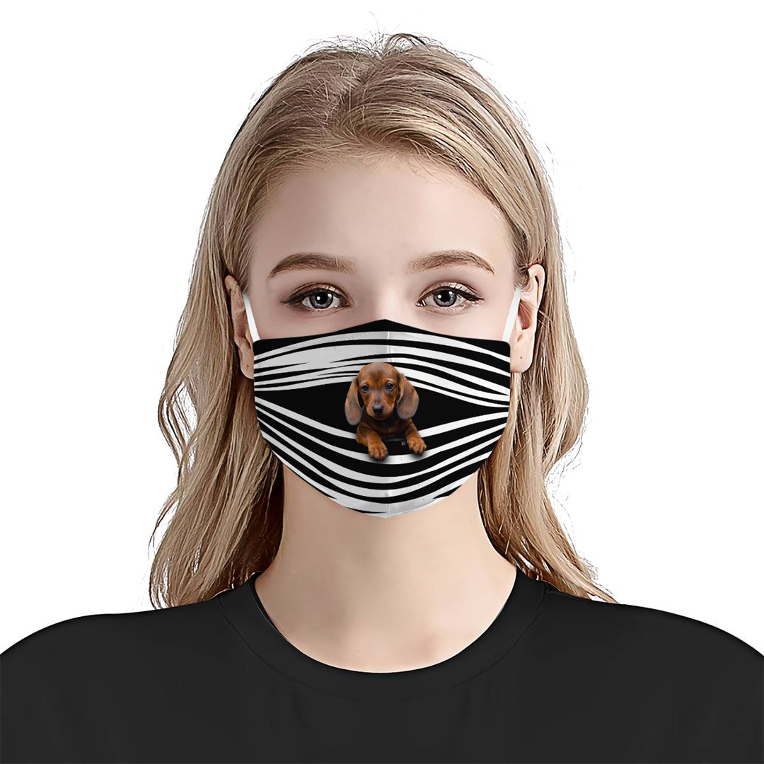 Dachshunds Stripes EZ16 1807 Face Mask - Hyperfavor