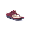 Maroon Color Casual Softys CL3498