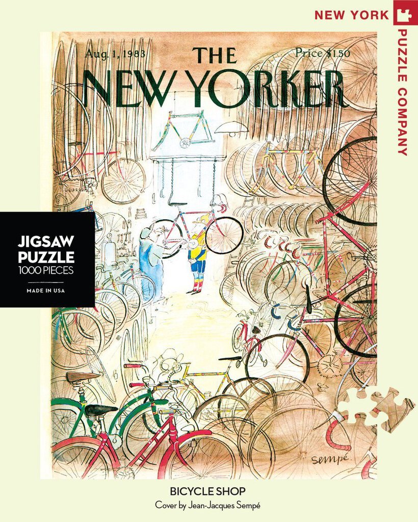 Bicycle Shop Puzzle
