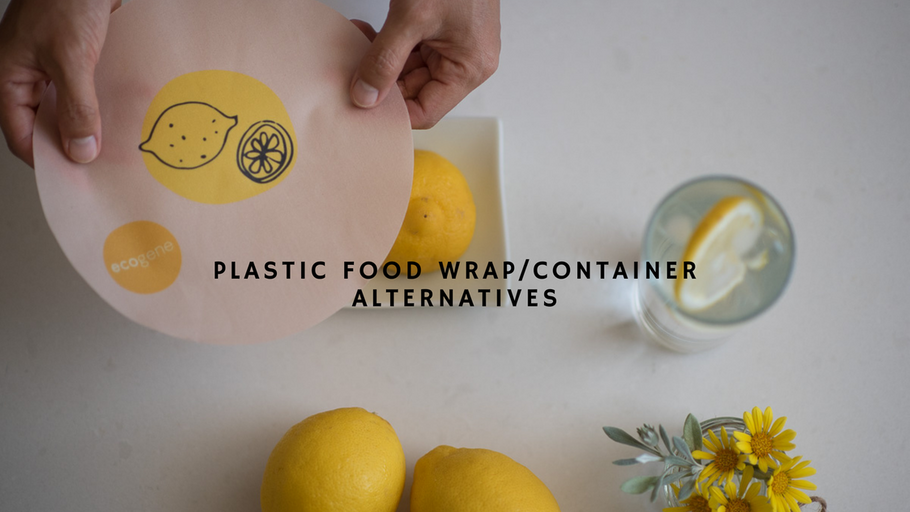 PLASTIC FOOD WRAP/CONTAINER ALTERNATIVES