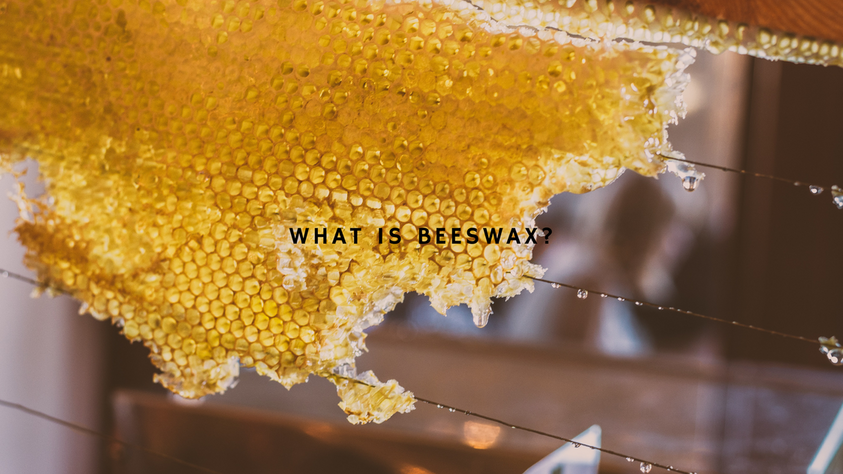 WHAT IS BEESWAX?