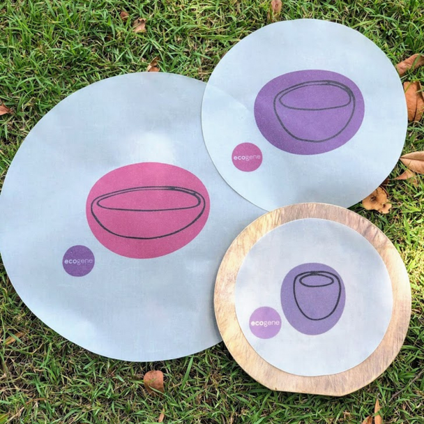 Bowls and Plates Pack