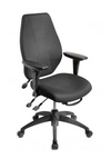 Ergonomic Task Chair - Ships Next Day