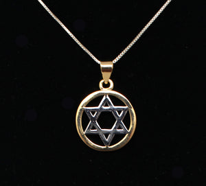 Two Tone Star of David Necklace