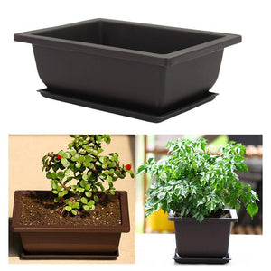 Bowl Nursery Basin Pots Plant Tray