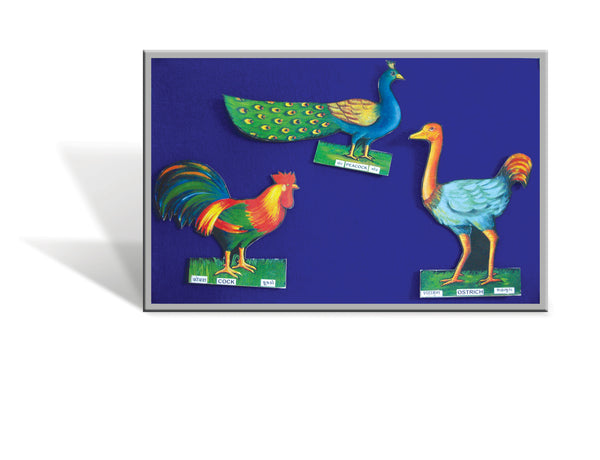 Cut-out of a peacock, cock and ostrich attached to a board