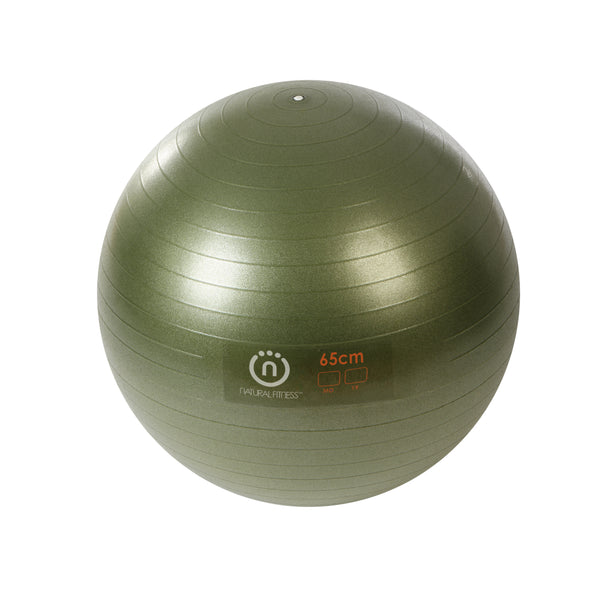 Natural Fitness PRO Burst Resistant Exercise Ball- 65cm_1