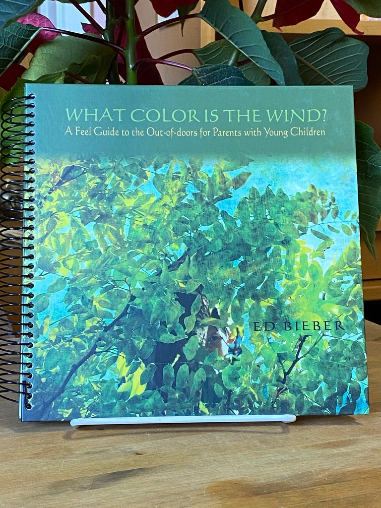 Books - What Color is the Wind