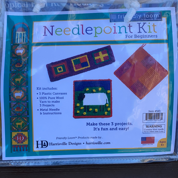 Needlepoint Kit for Beginners