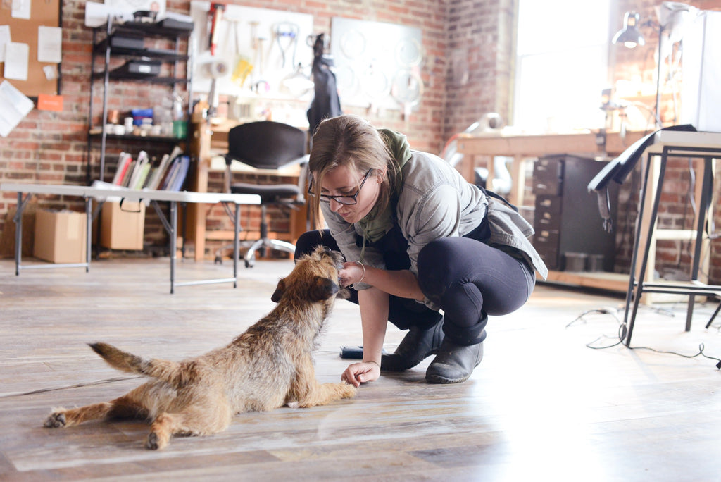 Emily Shaffer Studio with dog, Brill