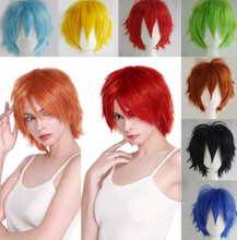 Load image into Gallery viewer, Anime Cosplay Short Hair Wig