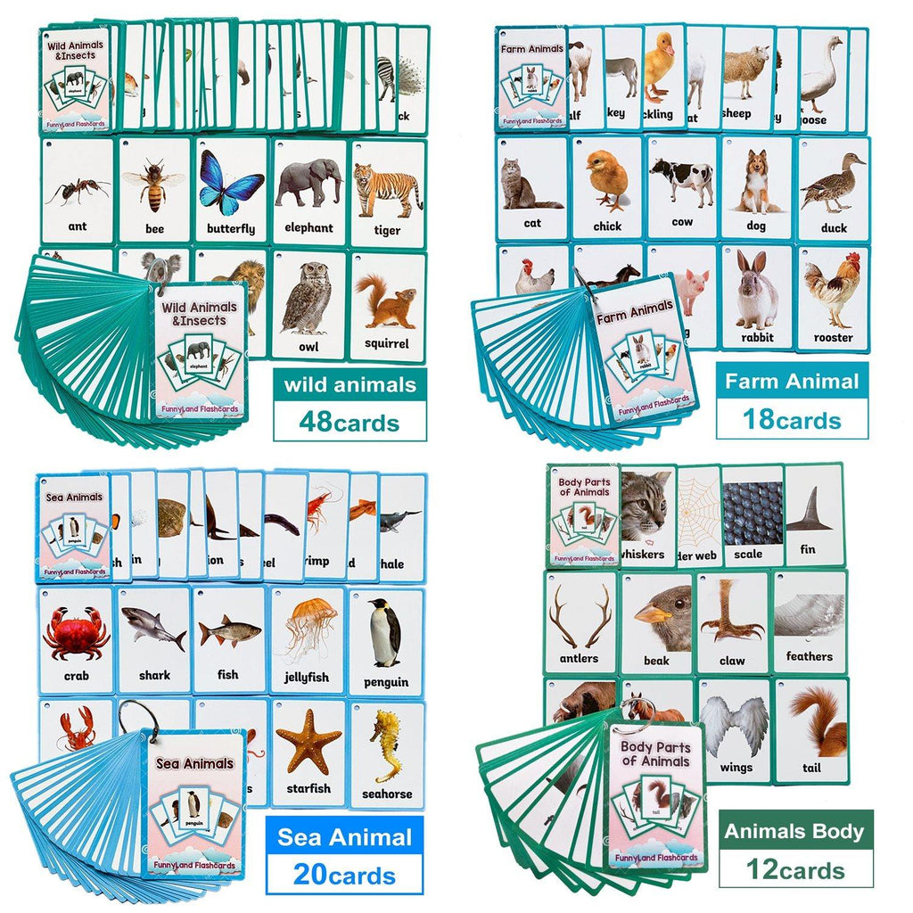 Learning Flash Cards Set - MonkeyPiggy