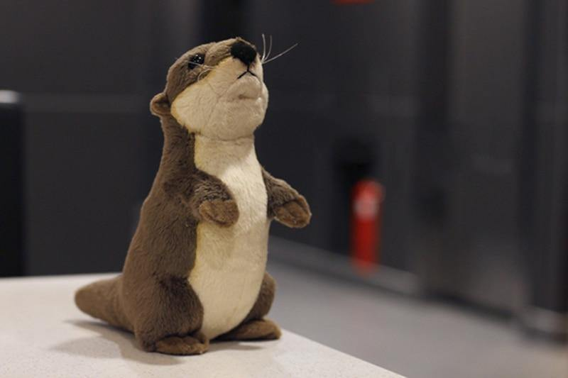 River Otter Plush - MonkeyPiggy