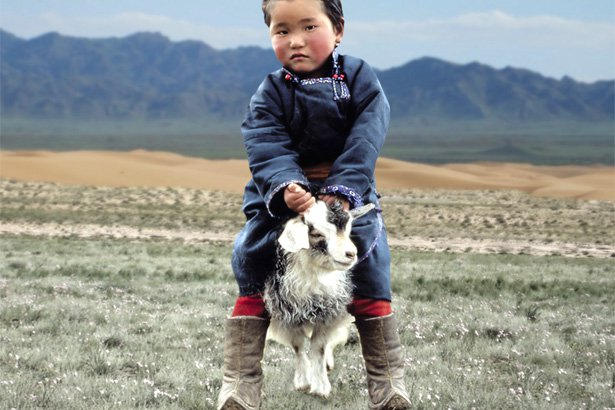 Lanificio Colombo supports and protects Inner and Outer Mongolia herders' future livelihoods
