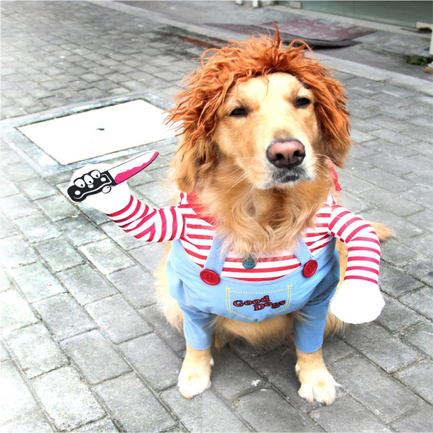 halloween-christmas-costume-clothes-dogs.jpg
