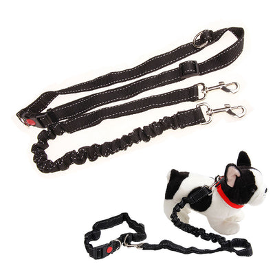 jogging-training-elastic-belt-for-dog.jpg