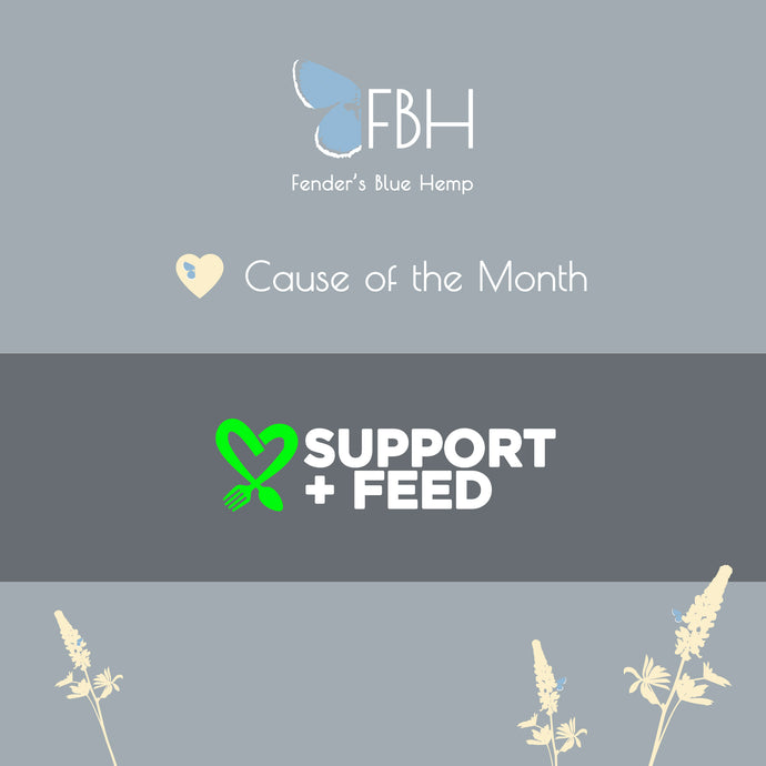 Support + Feed