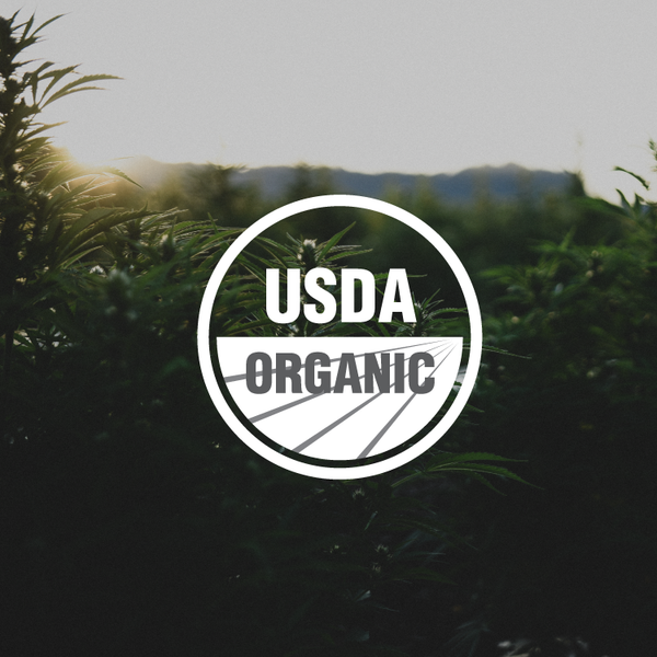 The Importance of Organic Certification