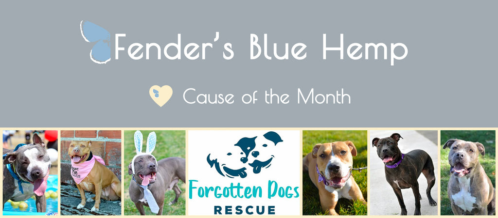 Cause of the Month Banner with Forgotten Dogs Rescue Images and Logo