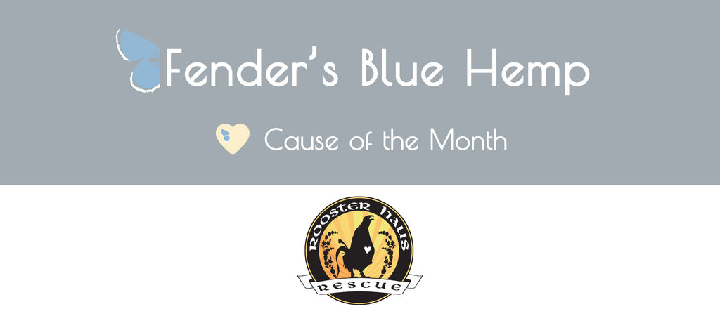 Fender's Blue Hemp Cause of The Month - Rooster Haus Rescue