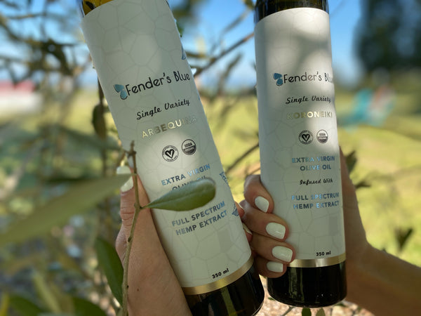 Olive Oil Infused with Hemp Extract: Holding Two Bottles Beside Olive Tree