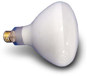 Pool Light Replacement Flood Bulb