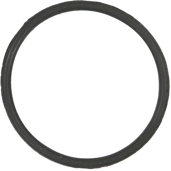 Generic Replacement for Hayward® T-Cell® O-Ring (2PK) by Optimum Pool Technologies