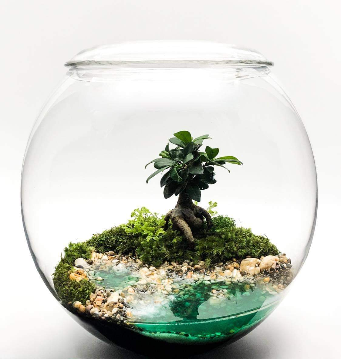 The Woodland Lakes Glass Orb is a beautiful Terrarium complete with a glass lid featuring beautiful landscapes and its very own hand poured lake. Measuring 33cm x 34cm High it brings with it so much Woodland beauty.